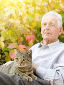 Elder Care Dublin GA - The Best Cat for Your Senior